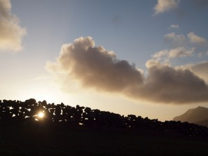 Solar Eclipse - Solformørkelse?